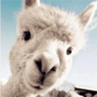 羊驼社区炮兵app