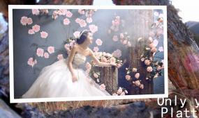 冬季华丽大气婚礼视频