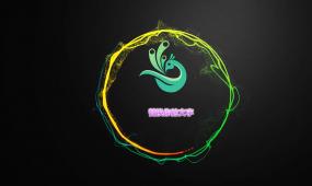唯美闪亮光圈logo演绎片头