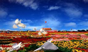 长城白鸽祖国山河国庆节视频素材