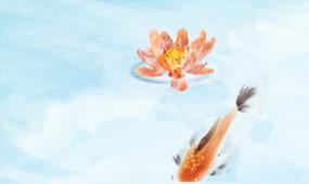 美炸的中國風水彩水墨風動畫荷塘鯉魚荷花