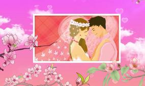 浪漫粉色樱花婚礼视频相册ae模板
