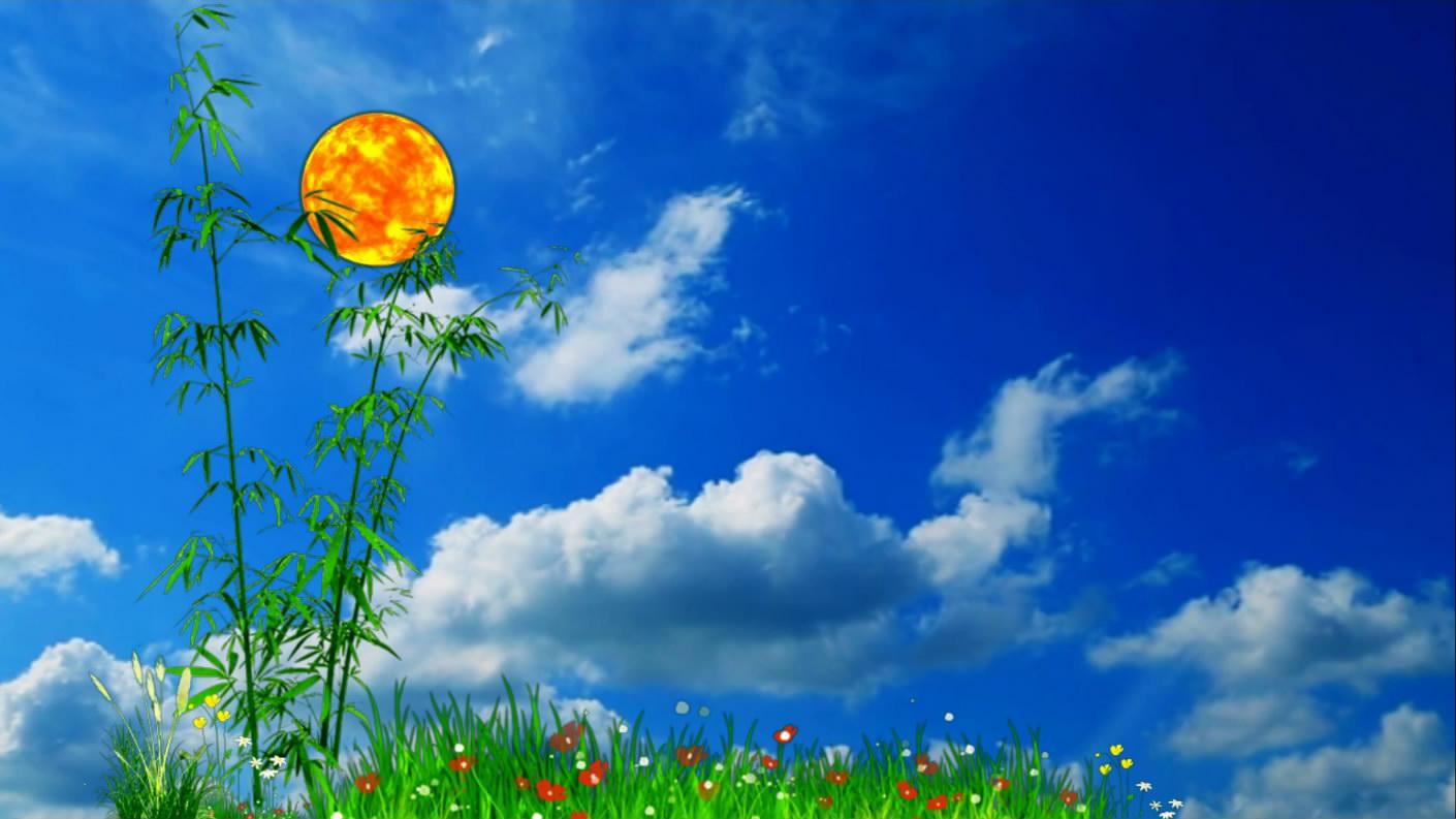 蓝天白云太阳翠竹花草